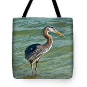 Honeymoon Island Heron Tote Bag