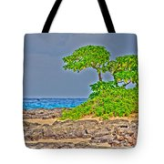 Honolulu Hi 7 Tote Bag