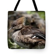 Hooded Merganser Female Tote Bag