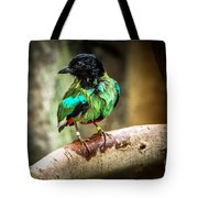 Hooded Pitta Tote Bag