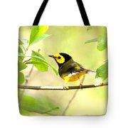 Hooded Warbler - Img_9274-009 Tote Bag