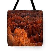 Hoodoo Texture Tote Bag