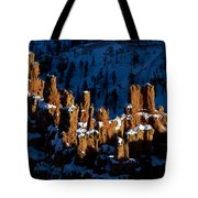 Hoodoos In Shadows Bryce Canyon National Park Utah Tote Bag