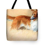 Hopper's Cape Cod Evening -- The Dog Tote Bag