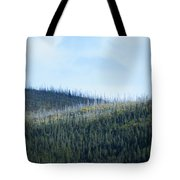Horizontal Renewal Tote Bag