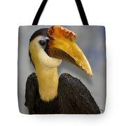 Hornbill 2 Tote Bag