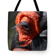 Hornbill Closeup Tote Bag
