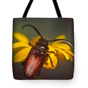 Horned Beetle Tote Bag