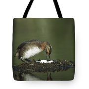 Horned Grebe Adult On Floating Nest Tote Bag