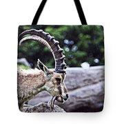 Horned Sheep Tote Bag