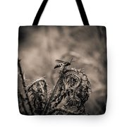 Hornet And Thorn - B Tote Bag
