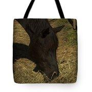 Horse 34 Tote Bag