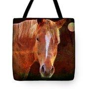 Horse 7 Tote Bag