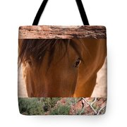 Horse And Canyon Tote Bag