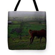 Horse And Farmhouse Tote Bag