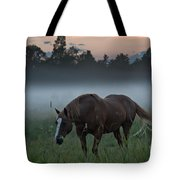 Horse And Fog Tote Bag