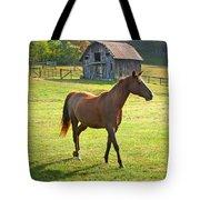 Horse And Old Barn In Etowah Tote Bag