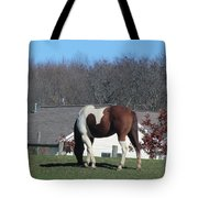Horse And Shadow Tote Bag
