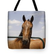 Horse Beauty Tote Bag