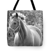 Horse Black And White Tote Bag