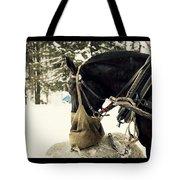 Horse Cinema Style Tote Bag