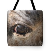 Horse Close Up Tote Bag