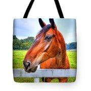 Horse Closeup Tote Bag