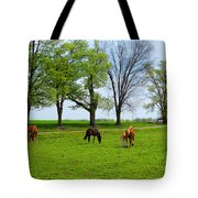 Horse Country Tote Bag