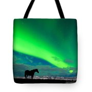 Horse Distant Snowy Peaks With Northern Lights Sky Tote Bag