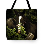 Horse Fence Tote Bag
