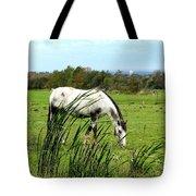 Horse Grazing In Field Tote Bag