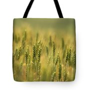 Horse Heaven Wheat Tote Bag