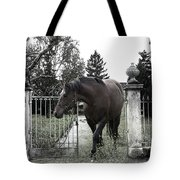 Horse In Europe Tote Bag