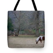 Horse In The Mist Tote Bag