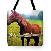 Horse In The Pasture Tote Bag
