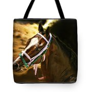 Horse Last Memories Tote Bag