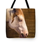 Horse Nap Tote Bag