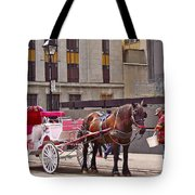 Horse Needs Water In Old Montreal-quebec-canada Tote Bag