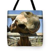Horse Nose Tote Bag