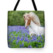 Horse Running By Lupines. Purebred Tote Bag