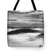 Horse Shoe In Black And White. Tote Bag