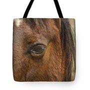 Horse Tear Tote Bag