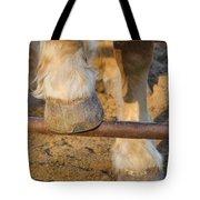 Horses 4 Tote Bag