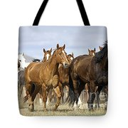 Horses-animals-2 Tote Bag
