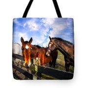 Horses At The Fence Tote Bag