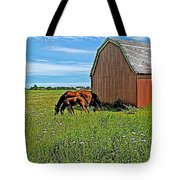 Horses By A Barn Along Confederation Trail-pei Tote Bag