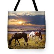 Horses Grazing At Sunset Tote Bag