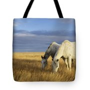 Horses Grazing In Cypress Hills Tote Bag