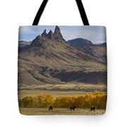 Horses In Fall Colors   #0371 Tote Bag