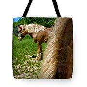 Horses In Meadow Tote Bag